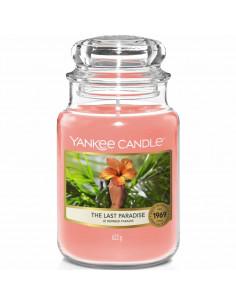 yankee candle exotic bergamot - candela media